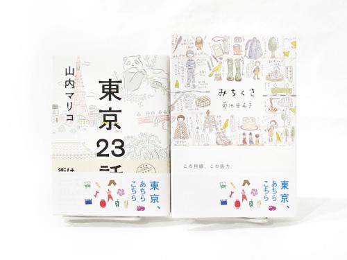 achikochi_2_500x375