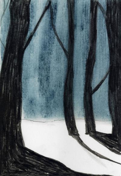 ondo_WinterForest_4