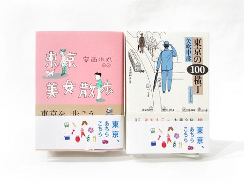 achikochi_1_500x375