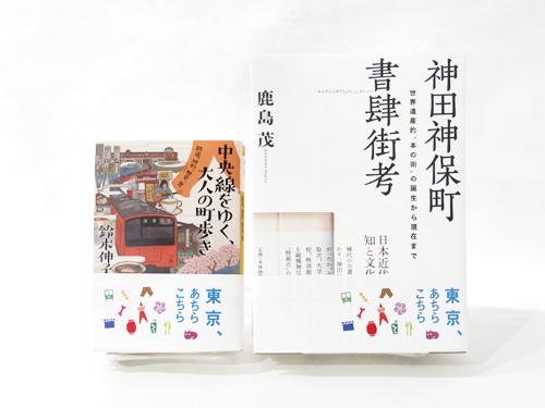 achikochi_3_500x375