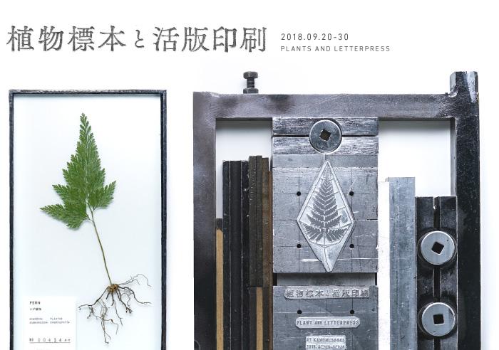plant_letterpress_700x492